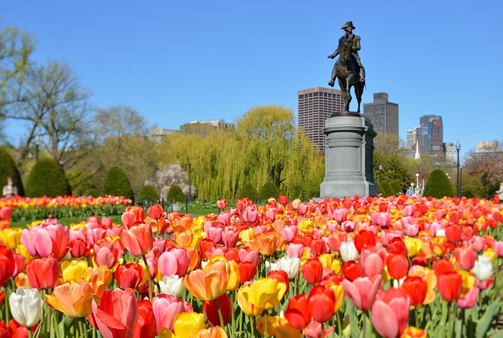 Boston Public Gardens - 2 days in Boston itinerary